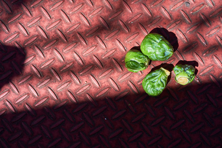 Directly above shot of brussels sprout on diamond plate