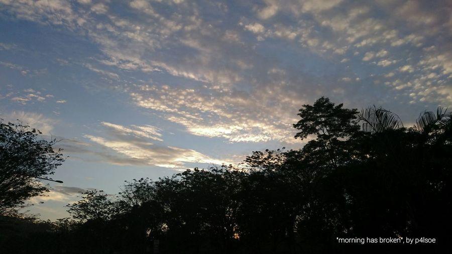 Morning Has Broken by P4lsoe