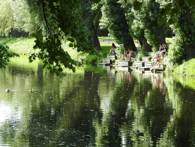 Tavrichesky Garden Greenyatmosphere Mirror Lake View Sunny Day 🌞 43 Golden Moments People Together Park Very Hot Sankt-peterburg Russia Showcase July