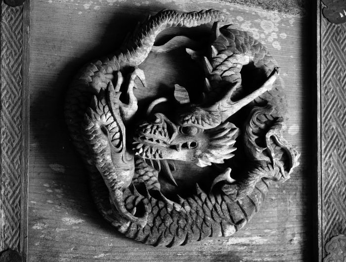 Dragon Animal Themes Traditional Architecture Japanese Shrine Harunashrine Double Dragon's Gate Bnw