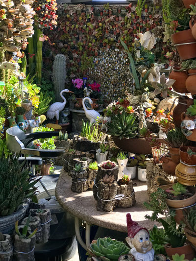 Jardin miniature d'un facteur Cheval local Representation Sculpture Human Representation Flower Statue Plant Flowering Plant Art And Craft Creativity Choice Day Male Likeness Potted Plant Variation No People Nature Large Group Of Objects Front Or Back Yard Religion Belief Outdoors