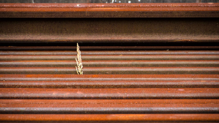 [ Nur der Wille zählt ] Leben Lebensfreude Rost Architecture Backgrounds Brown Close-up Corrugated Corrugated Iron Day Full Frame Iron Lebensfroh Metal No People Outdoors Pattern Rusty Small Sunlight Textured  Steel Steel Structure