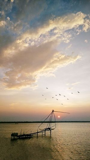 Flock Of Birds Bird Flying Sky Sunset Animals In The Wild Beach Tranquility Beauty In Nature Outdoors Silhouette Cloud - Sky Scenics Water Art Is Everywhere Break The Mold The Week On EyeEm The Great Outdoors - 2017 EyeEm Awards Live For The Story Lost In The Landscape Perspectives On Nature
