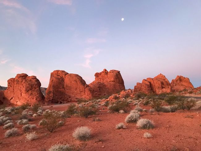Landscape of large orange rock formations at dawn Valley Of Fire State Park Rock Formation Rock - Object Nature Geology Scenics Tranquil Scene Beauty In Nature Travel Destinations Moon Day Physical Geography Landscape No People Outdoors Tranquility Sky