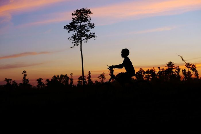 Silhouette Sunset Army Soldier Tree Nature Playing Bikecycle Happiness