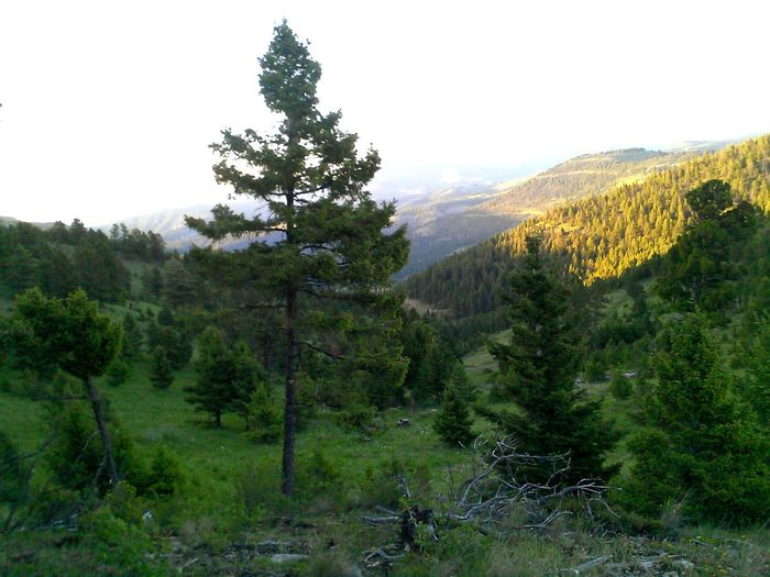 I Love This Time Of Day Sunday Sunset On A Mountain Life In Motion Enroute In Montana