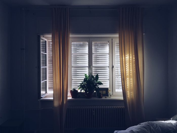 Window Indoors  Home Interior Curtain Day Domestic Room No People Plant Sunlight Bed Potted Plant Houseplant