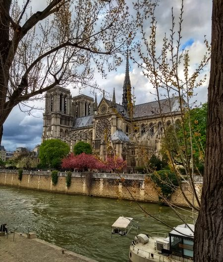 Notre Dame Church Notre Dame Paris Seine Metropole Tree Water Sky Architecture