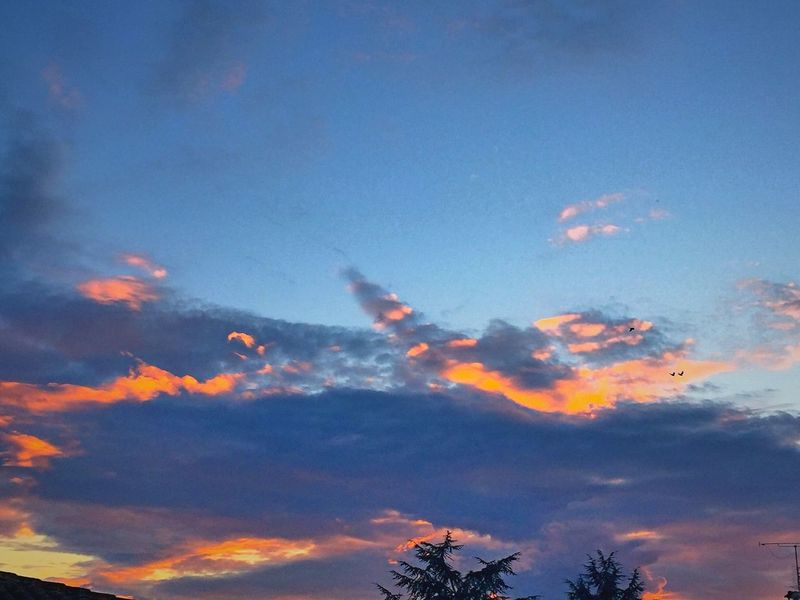 Sky Nature CIELFIE Skyfie Ciel Sunset Soleil Couchant Coucher De Soleil Ciel Et Nuages Ciel En Couleurs Nature Cloud Clouds And Sky Nuages