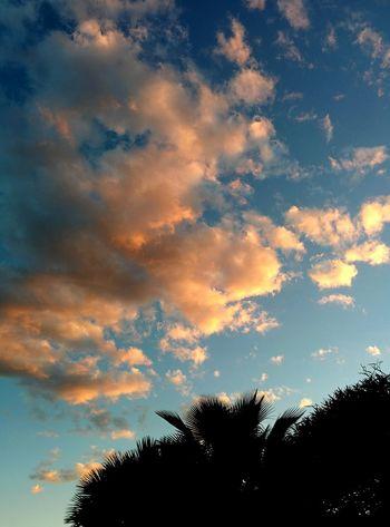 Cloud Porn Sunset