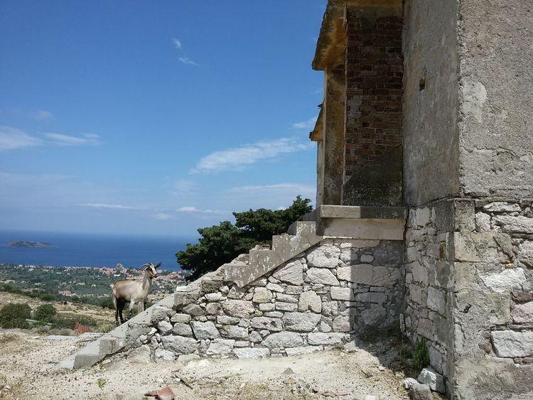 Greece Greece Islands Goatlife Travel Destinations Lesbos Lesbos Island Sea View