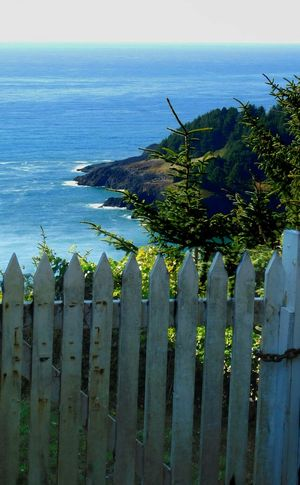 Cape Foulweather... Newport Oregon Nikon_photography Horizon Over Water Fence Tranquil Scene ToolWiz Photos Photo Editor My Photo Album ♡
