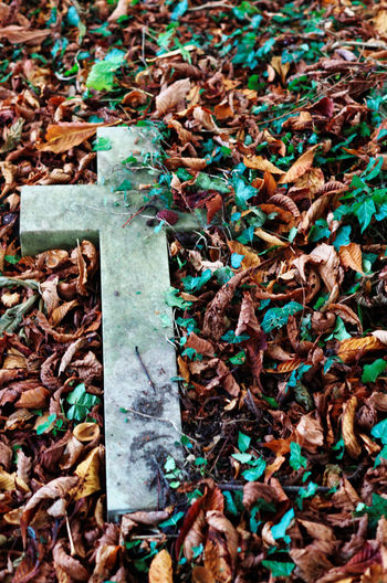 Fallen cross with Autumn leaves Autumn Leaves Cemetery Cross Fallen Grave Stone Graveyard Beauty No People Religion And Beliefs Tombstone