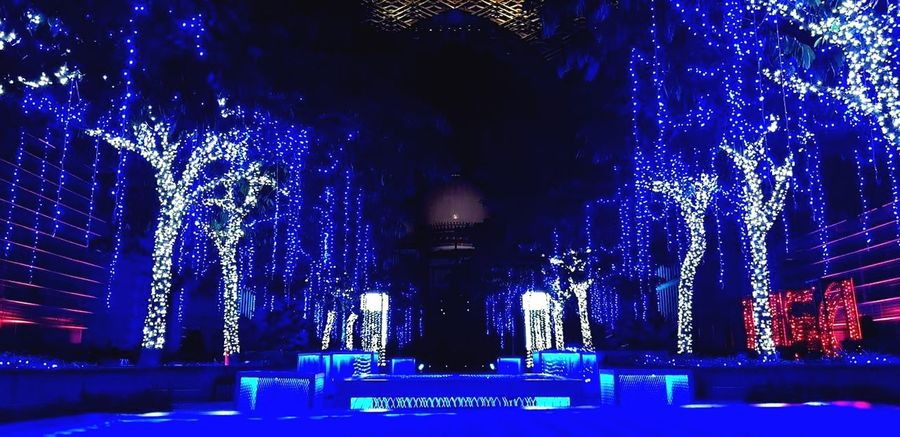 Lamp Festival. Illuminated Night Blue Low Angle View Built Structure Architecture No People