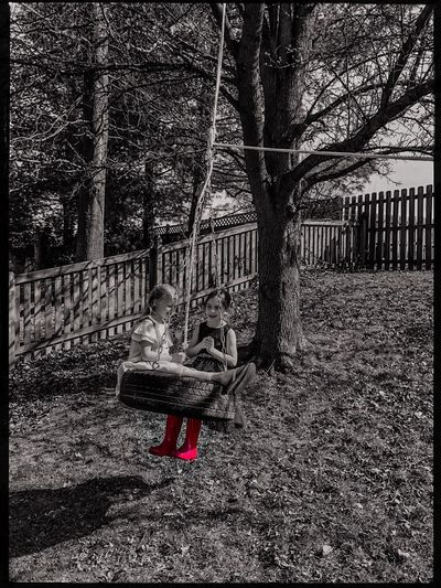 Two girls playing on a tire swing, with a splash of color. Swing Girls Children Childhood Kids Recreation  Day Built Structure Nature Tree Fence Barrier No People Outdoors