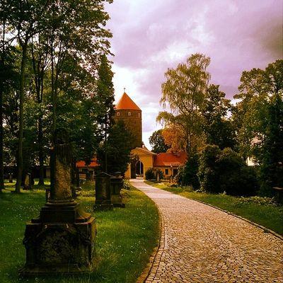 Cemetery Freiberg Saxony Sachsen Ig_deutschland Ig_germany Ig_europe Insta_international Insta_europe