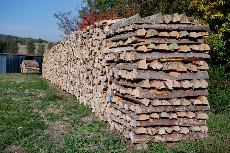 Kaminholz Rohstoff Holz Stack Tree Large Group Of Objects Plant Nature Log Deforestation Lumber Industry Grass Firewood Day Wood Wood - Material Forest Timber Abundance Field No People Land Outdoors Woodpile Stone Wall