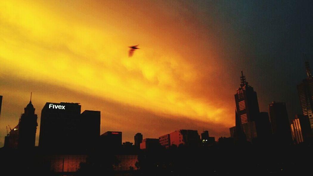 Gotham city Melbourne skyline Silhouette City Cloud - Sky Shadows & Lights