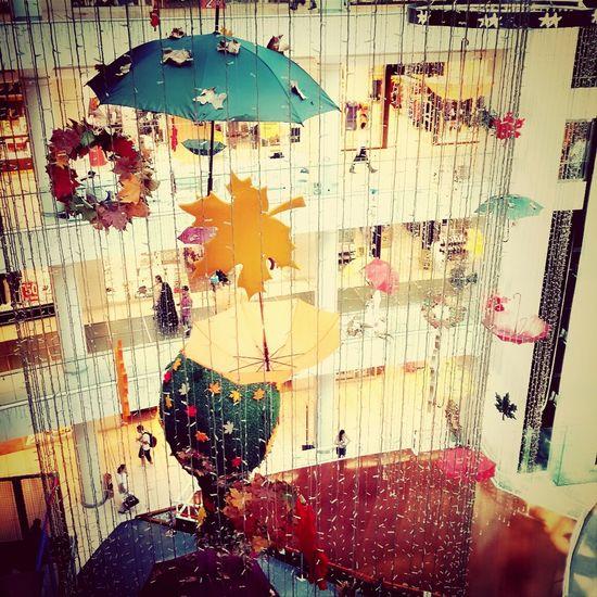 Auntumn Umbrella Leaves Sonbahar