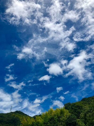 A Beautiful Landscape. (180822-181004) Cloud - Sky Sky Plant Tree Beauty In Nature Blue Low Angle View Scenics - Nature Nature Non-urban Scene Environment Landscape Green Color Growth Sunlight Tranquil Scene Tranquility Day Outdoors No People