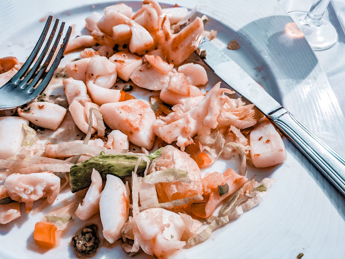 delicious seafood Spanish Food SPAIN Grilled Grilled Squid Salad Sunlight Sunlit Eating Outside Plate Fork High Angle View Close-up Food And Drink Eaten Served Prepared Food Leftovers Serving Size Seafood Squid