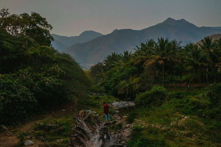 Landscape Mountain Nature Tree Beauty In Nature Forest Growth Outdoors Rural Scene Travel Destinations Mountain Range Plant Cloud - Sky Lush - Description Scenics Agriculture People Sky One Person Day River Exploring Kerala Palakkad Attapadi EyeEmNewHere