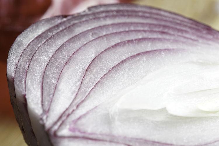 Close-up of wet rose in market