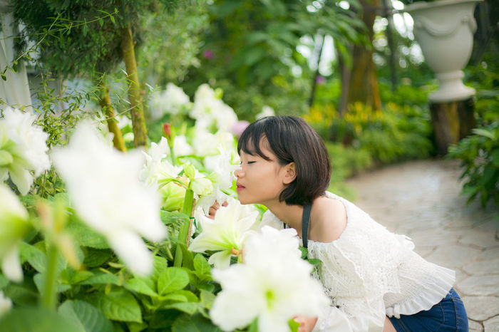 Beautiful woman with white flowers in garden. Beautiful Woman Beauty Black Hair Cheerful Close-up Day Flower Healthy Lifestyle Nature One Person One Woman Only One Young Woman Only Only Women Outdoors People Plant Smiling Summer Tree University Student Young Women