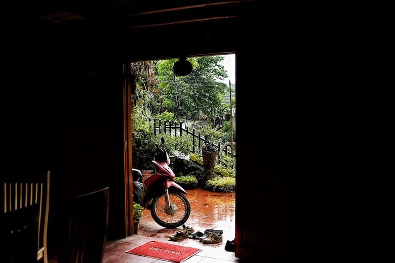 Vietnam SaPa Window Architecture Indoors  Built Structure Plant Day No People Nature Sunlight Bicycle Glass - Material Building Transportation Land Vehicle Transparent Mode Of Transportation Wall - Building Feature Entrance