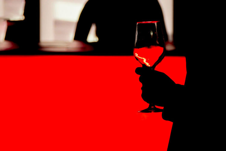 Close-up Day Indoors  No People Red Silhouette Wine Wine Moments Wine Not Wine Tasting Wineglass