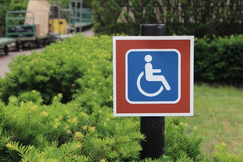 Close-up of disabled sign by plants