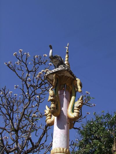 Buddhist Ceremonial Column with Elephant and Snakes Animal Representations Blue Sky Buddhism Buddhist Art Buddhist Culture Buddhist Pagoda Buddhist Temple Ceremonial Column Clear Sky Column Composition Elephant Statue Flowering Tree Gold Coloured Low Angle View Myanmar No People Outdoor Photography Religion Salay Snakes Sunlight And Shadows Travel Destination Trees Unusual