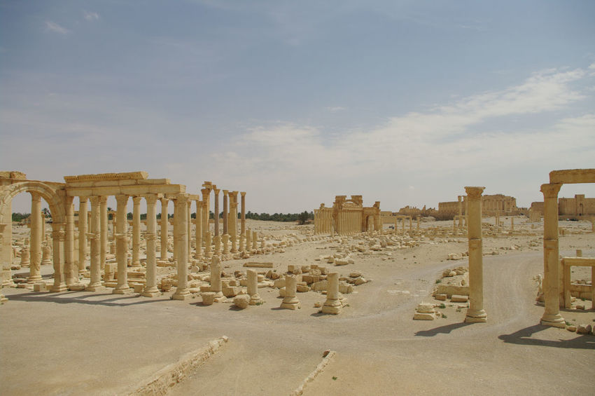 Palmyra Ruins Syria  Ancient Ancient Civilization Archaeology Architectural Column Architecture Built Structure Cloud - Sky Day History Memorial Nature No People Old Ruin Outdoors Palmyra Sky Sunlight The Past Tourism Travel Travel Destinations