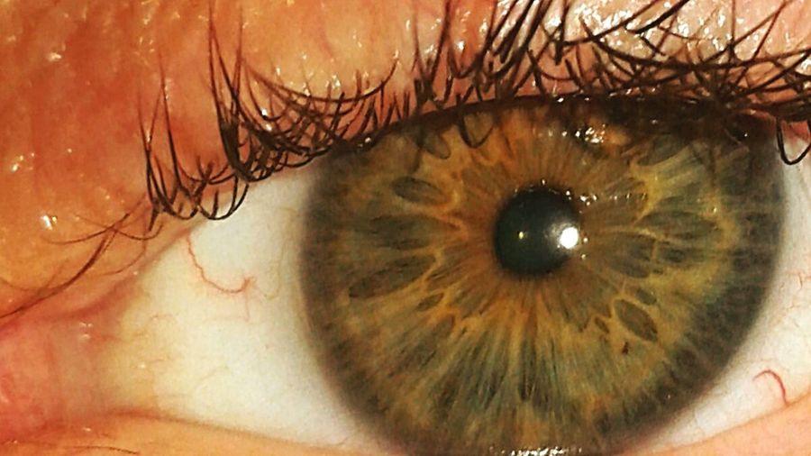 Eye-em eye