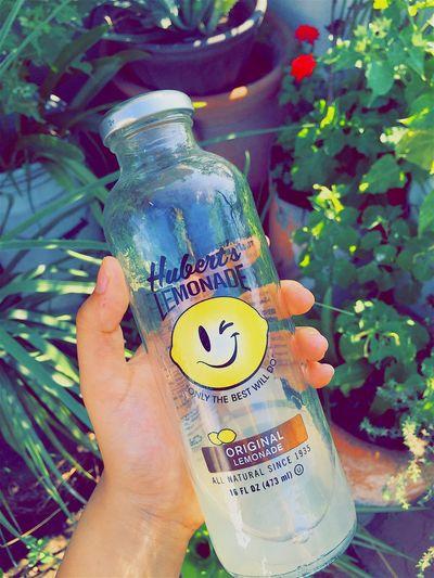 Humbert's lemonade 🍋 The Best One  Lemonade
