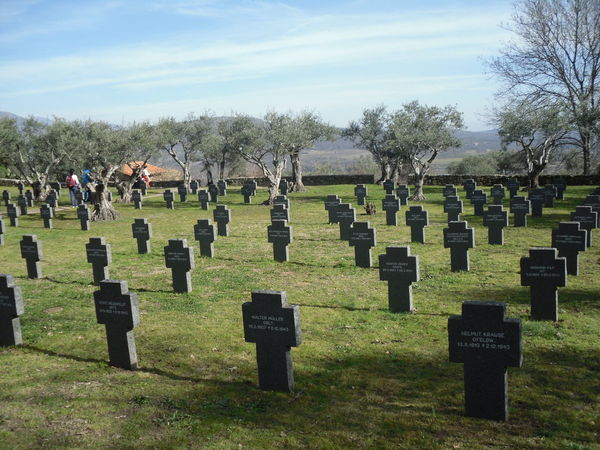 Cuacos De Yuste Extremadura Extremadura, Spain Army Soldier Bare Tree Cemetery Cross Cuacos Day German Cemetery Grass Grave Gravestone Graveyard Memorial Military Nature Outdoors People Sky Spaın Spirituality The Past Tombstone Tree