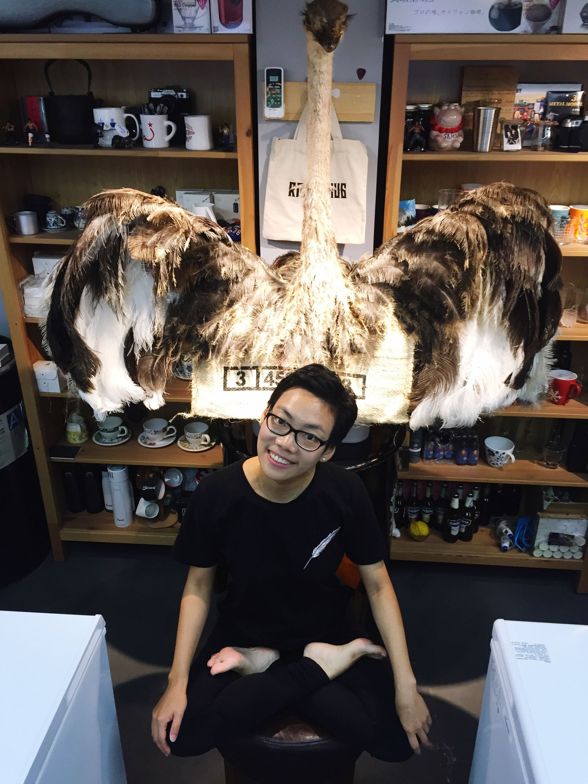 one person, eyeglasses, front view, real people, indoors, sitting, fashion, leisure activity, young adult, store, looking at camera, young women, day, portrait, mammal, animal themes