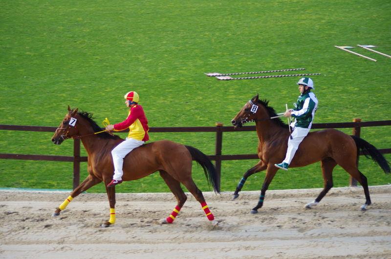 Historical Parade Horse Race Palio Palio Di Legnano