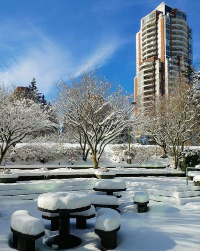 Snow covered plants and buildings against sky