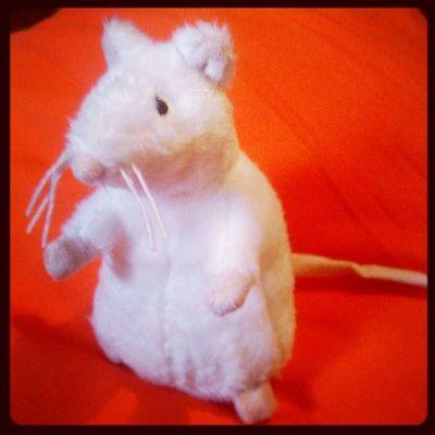 Плюшевый крыс по имени Виталик!
