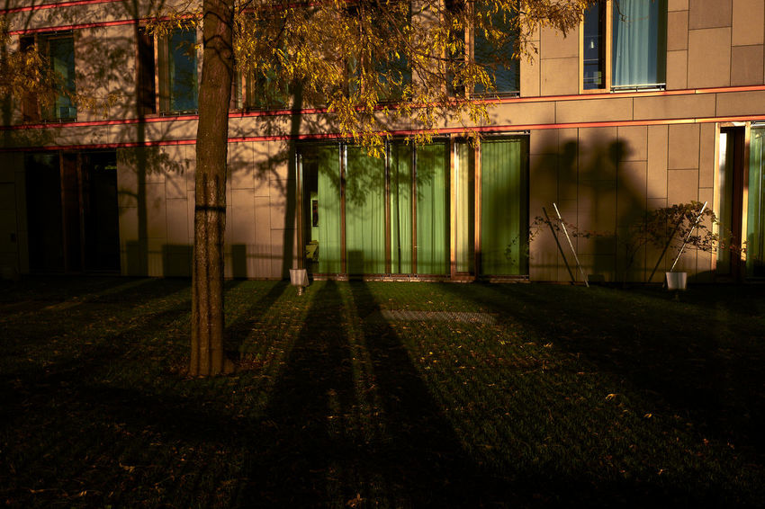 Architecture Autumn Beauty In Nature Building Exterior Built Structure Day Grass Growth Nature No People Outdoors Shadow Tree