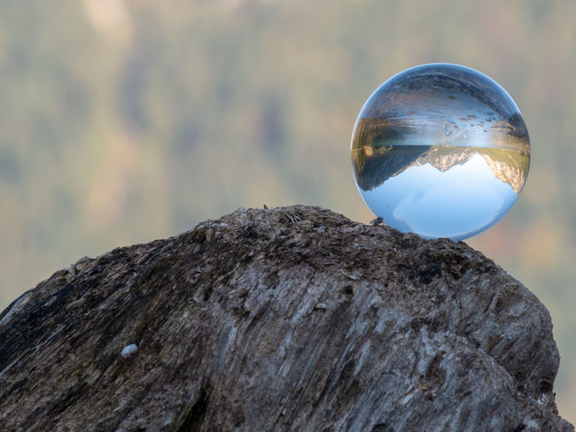 Focus On Foreground Sphere Nature Close-up Transparent Day Solid Rock No People Rock - Object Outdoors Tree Crystal Ball Reflection Fragility Plant Vulnerability  Glass - Material Wood - Material Beauty In Nature