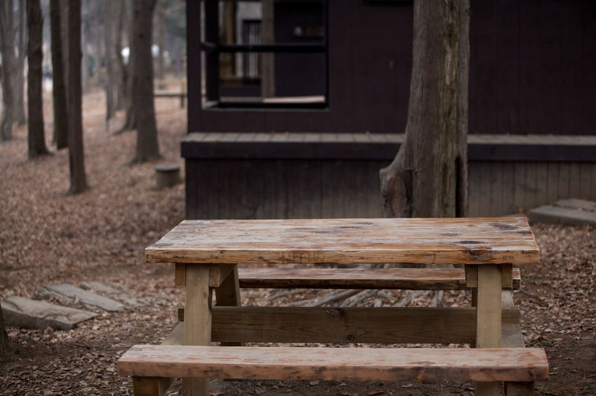 Abandoned Bad Condition Built Structure Damaged Day Deterioration Door Nami Island No People Obsolete Old Outdoors Plank Ruined Table And Bench Wall Weathered Wood Wood - Material Wooden