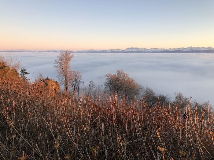 Alps Glärnisch