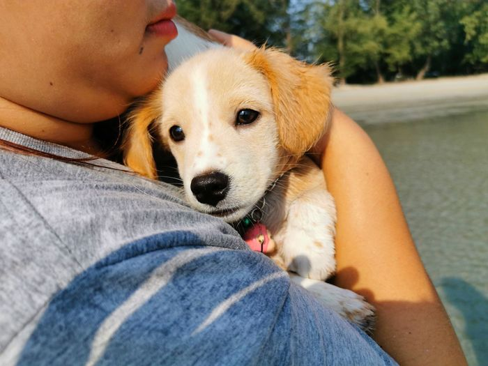 Midsection of woman hugging dog outdoors