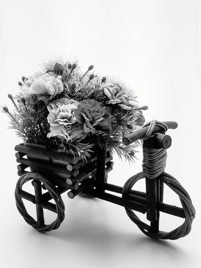 B&W B&w Blackandwhite Flower Bicycle Bicycle Rack EyeEm Best Shots EyeEmNewHere EyeEm Selects EyeEm Gallery Eye4photography  EyeEm Eyeemphotography EyeEm Best Edits EyeEmBestPics EyeEm Best Edits EyeEm Best Shots - Nature Close-up