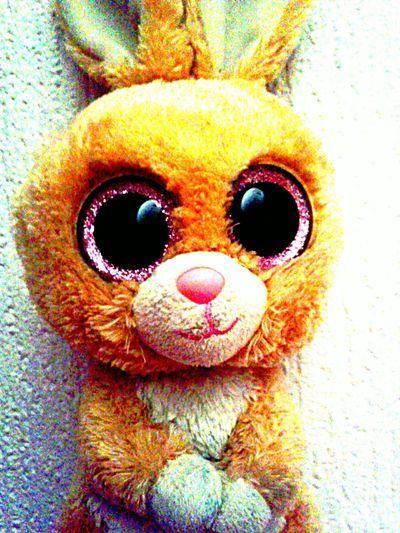 Rabbit Pink Glitter Eyes In The Eyes Moon