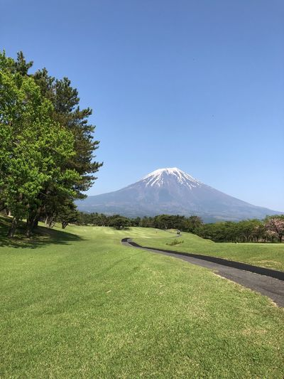 road to Mt.Fuji Plant Beauty In Nature Scenics - Nature Sky Green Color Tranquility Tranquil Scene Mountain
