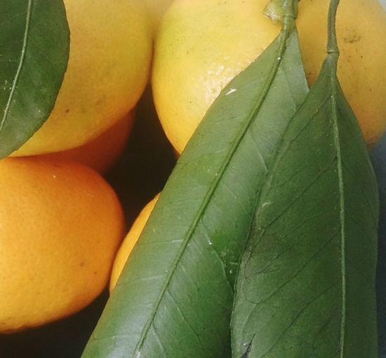 Мандарины. фрукты натюрморт Fruit Still Life Close-up Freshness цвета Colors