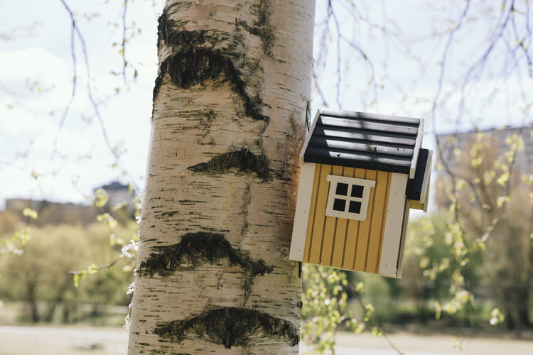 Bird House Swedish Cute Focus On Foreground No People Outdoors Small House Tiny House  Tree Tree Trunk Urban